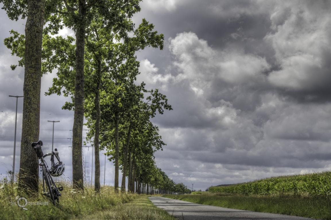 Die-OffeneBlende-RMF-25-Juli-2017-44